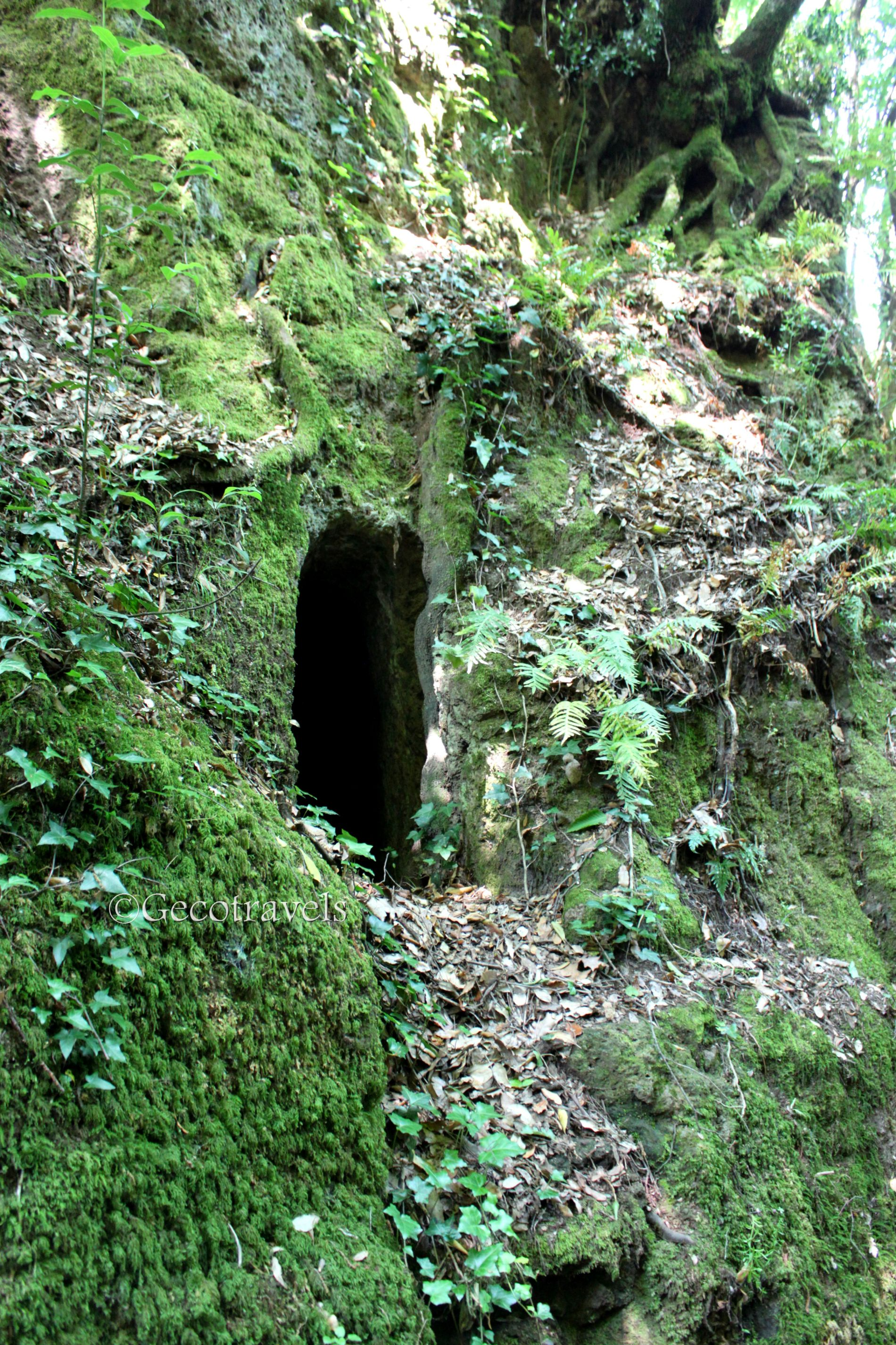 grotta della tagliata Vulsini