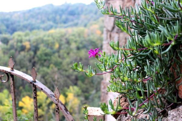 Vista sulla Valle del Treja
