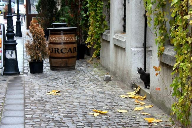 città vecchia Bucarest