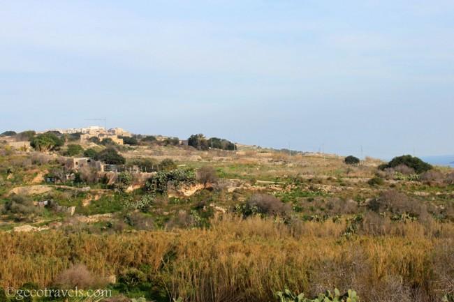 Gozo natura