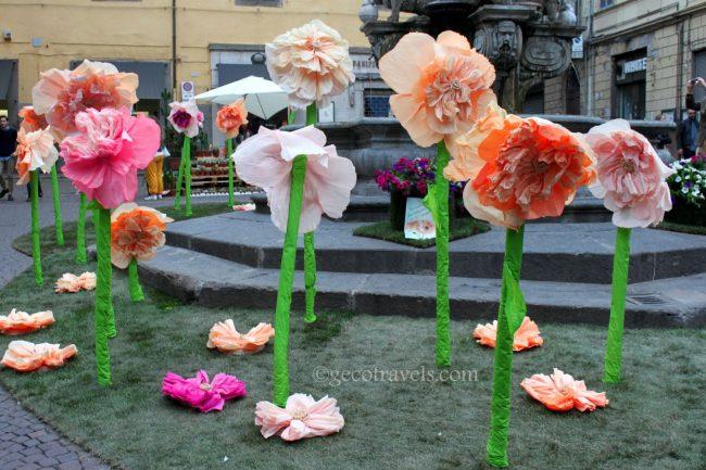 fiori giganti di carta crespa