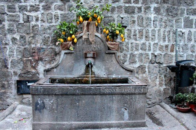 fontana San Pellegrino in fiore