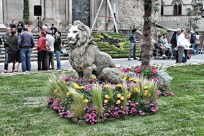 leone di Viterbo