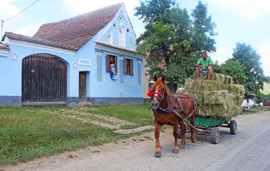 Viscri: viaggio attraverso la Romania rurale