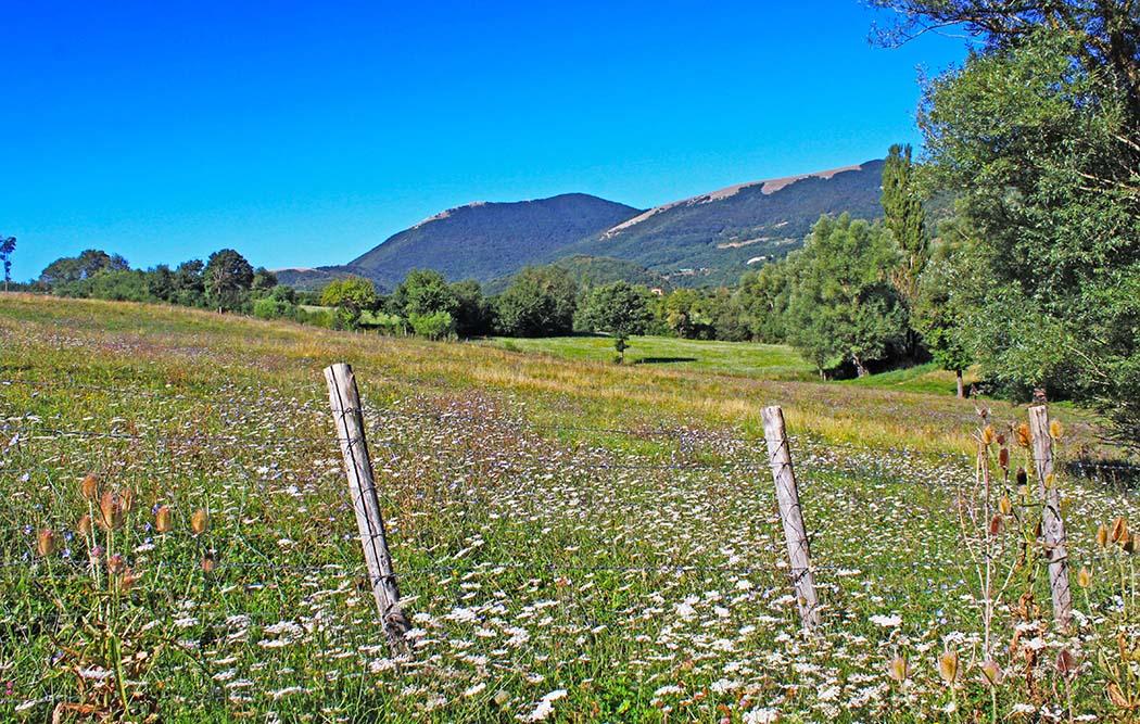 Cammino di San Benedetto: itinerario di 4 giorni