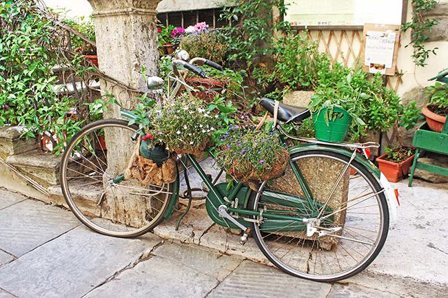 bicicletta con fiori