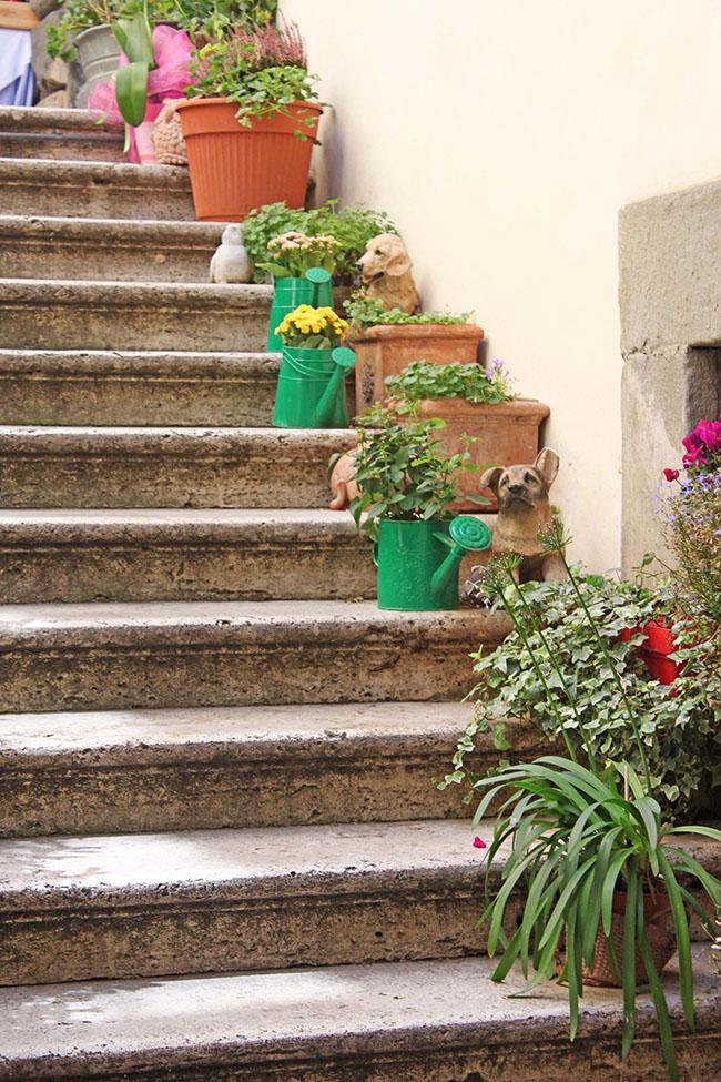 scale con piante e fiori