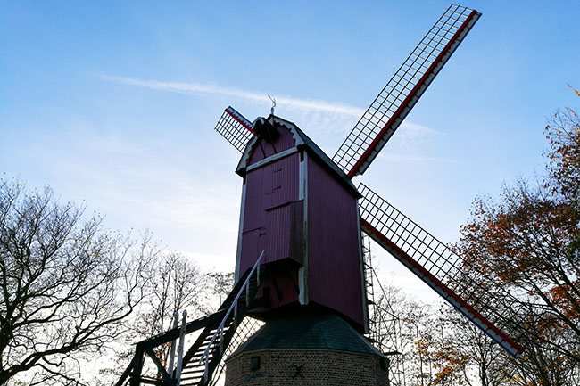 mulino a vento Bruges