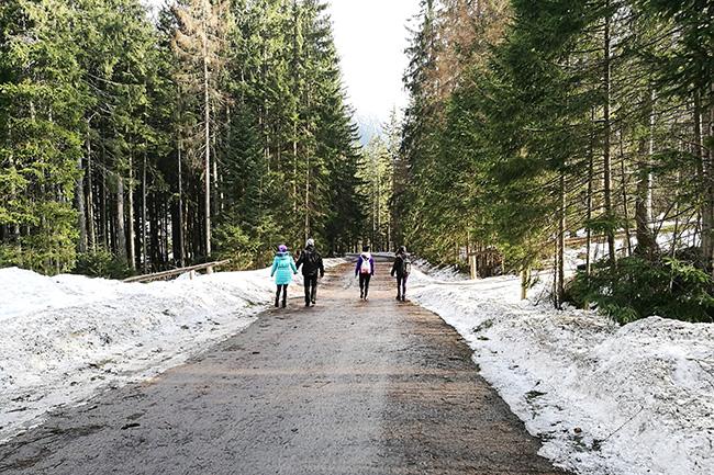 sentiero al Tatra National Park