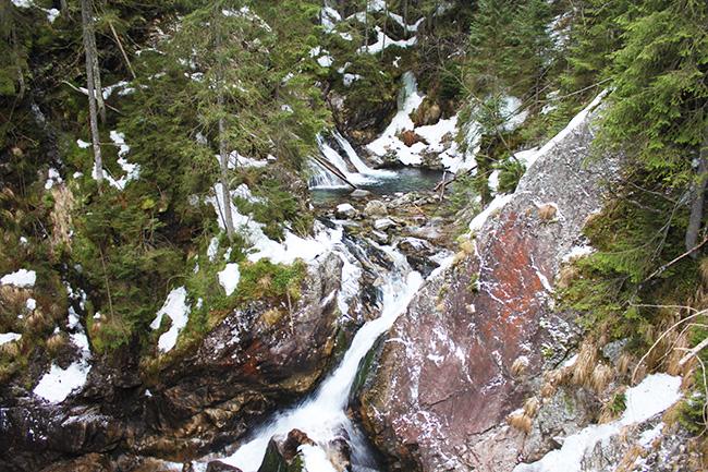 torrenti al Tatra National Park