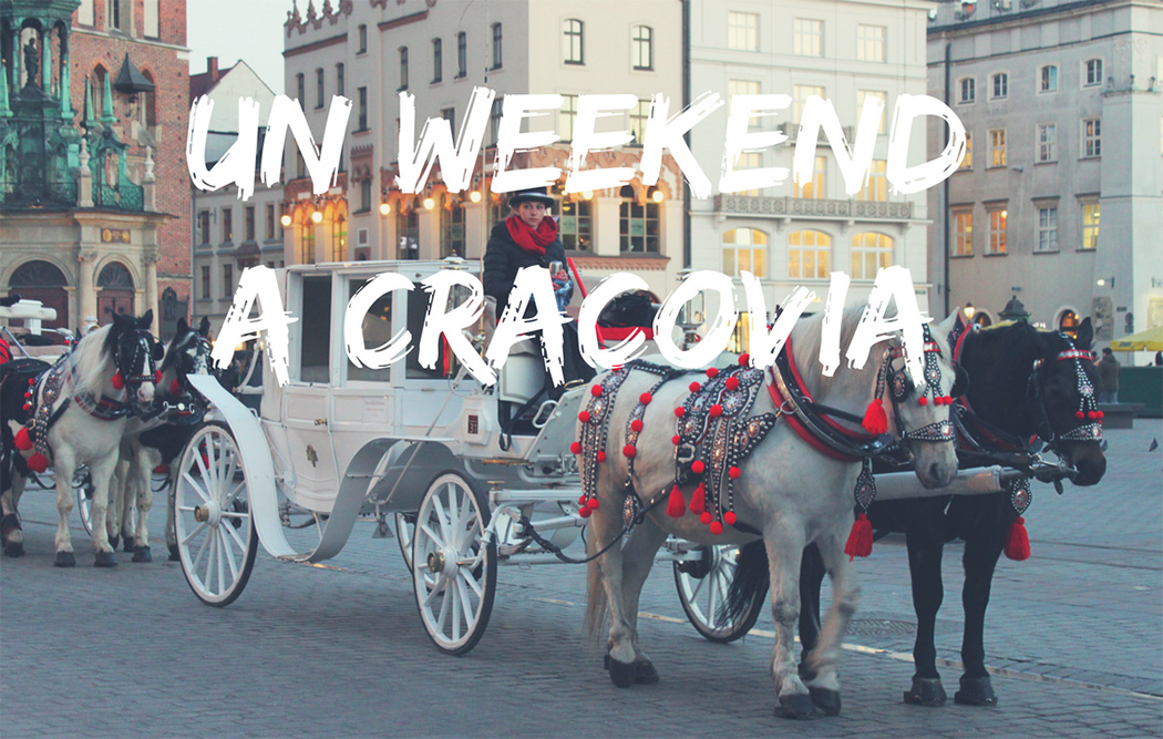 Un weekend a Cracovia (video)