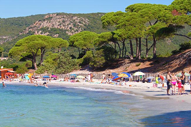 spiaggia Palombaggia