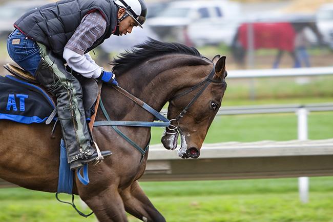 corsa a cavallo