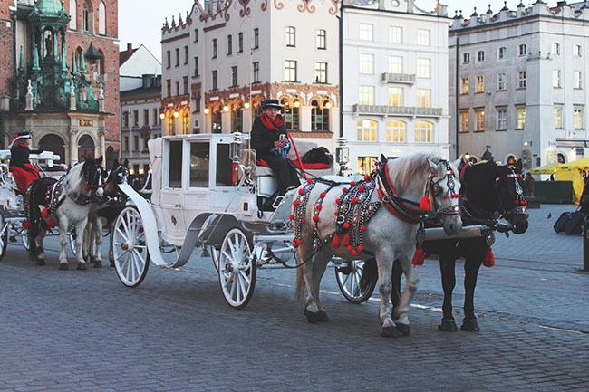 carrozze trainate da cavalli a Cracovia