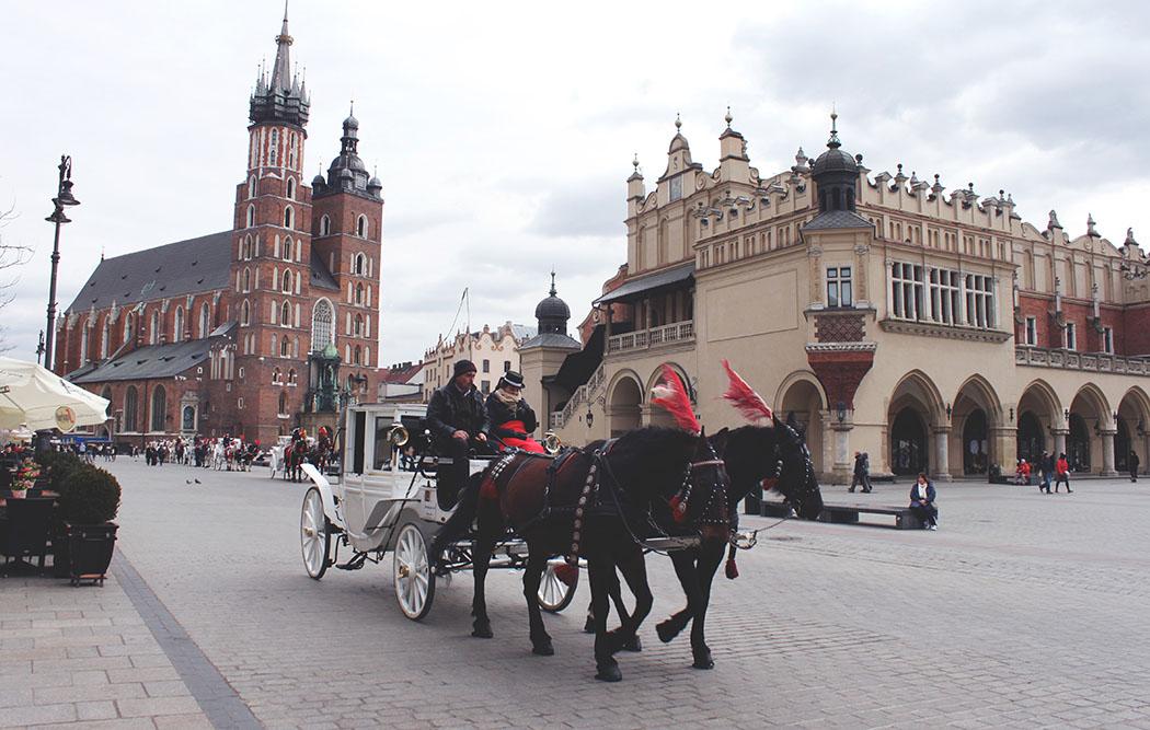 No allo sfruttamento dei cavalli nel turismo