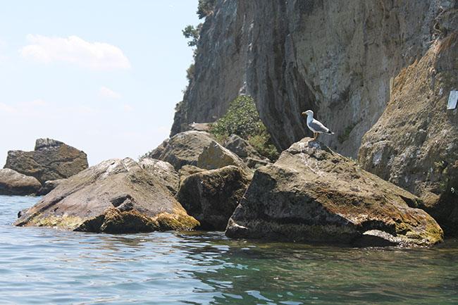 escursione al lago di Bolsena