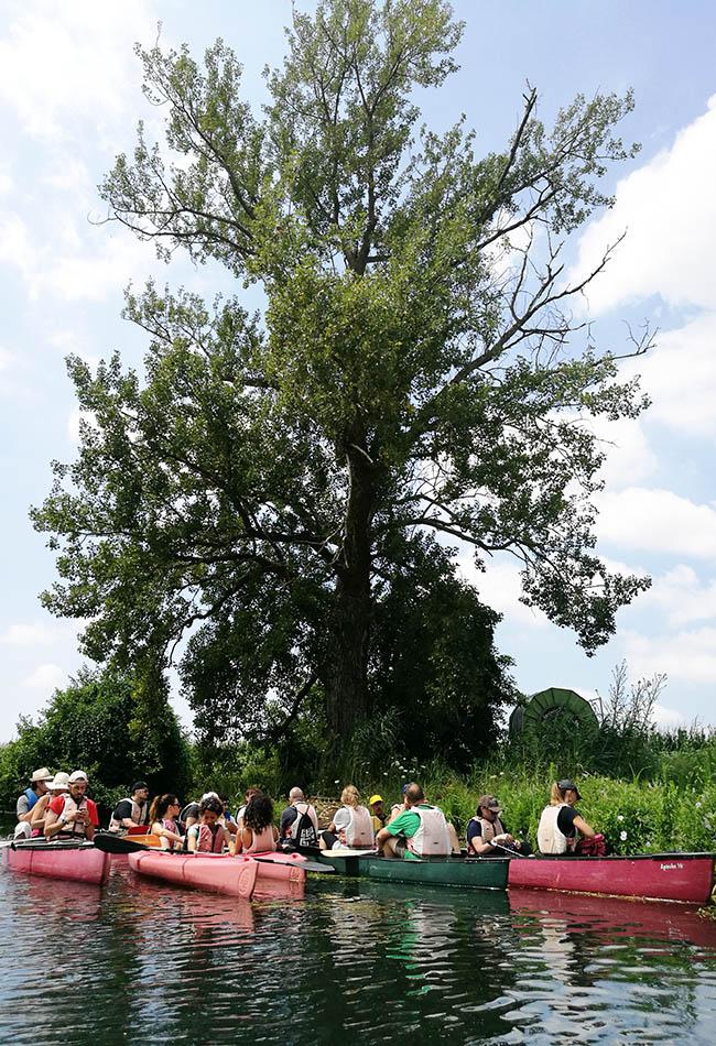 tour in canoa sul fiume Cavata